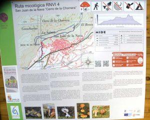 ruta_micologica_2_1